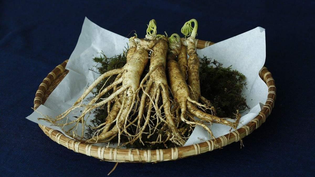 Які види трав є токсичними для печінки