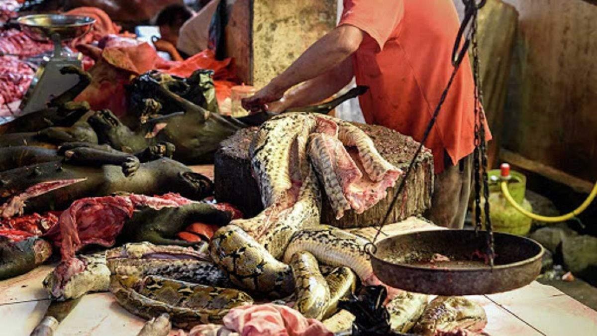 У ВООЗ закликають заборонити ринки диких тварин для запобігання майбутнім пандеміям