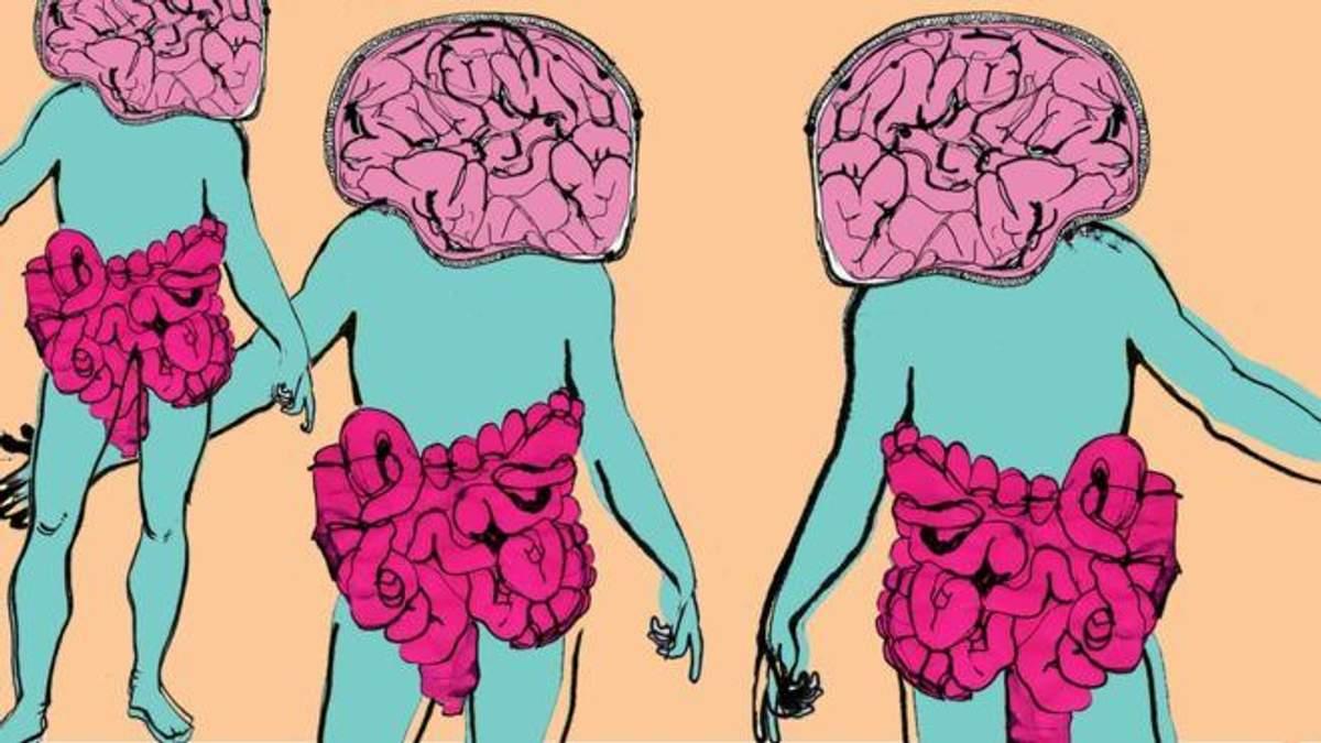 Бактерії впливають на настрій та стан людини