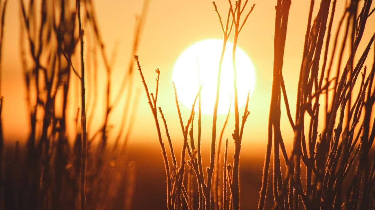 Вплив сонця на коронавірус
