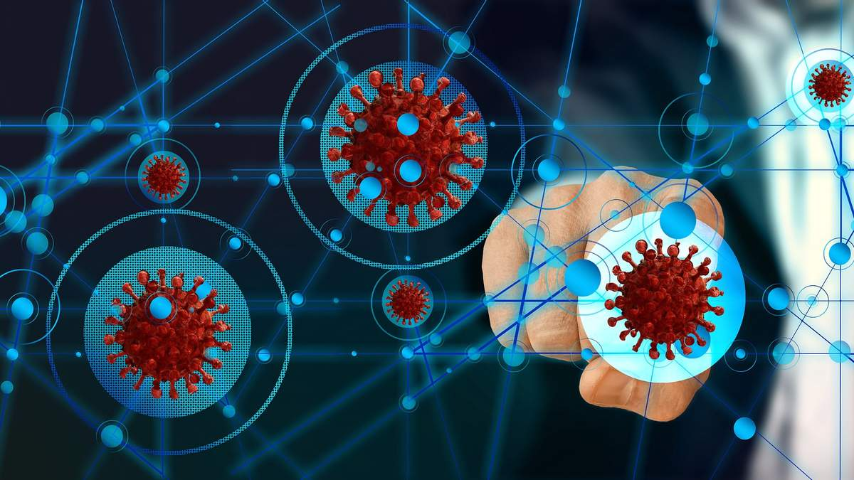 Создали калькулятор, который может рассчитать риск смерти из-за коронавируса