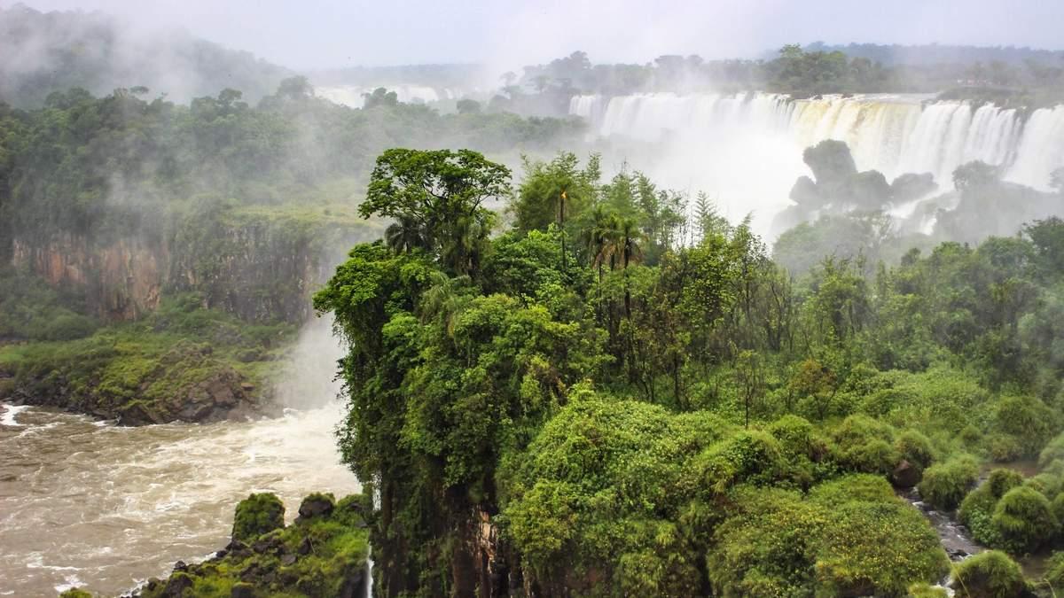 Наступним місцем зародження пандемії може стати Амазонія