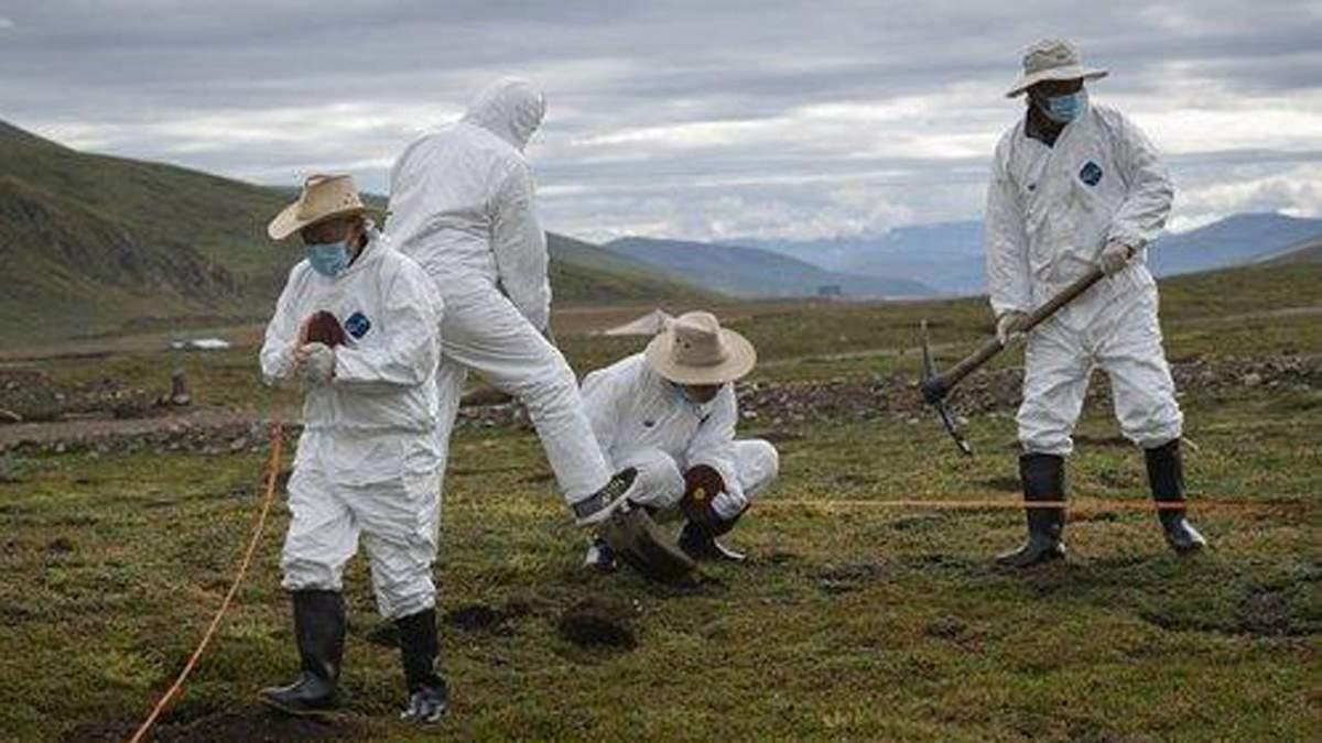 Чума в Китае в провинции Внутренняя Монголия 2020