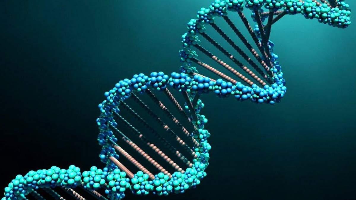 У ДНК людини знайшли сліди невідомих пращурів
