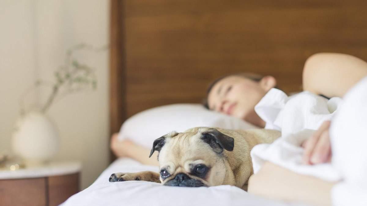 Вред дневного сна