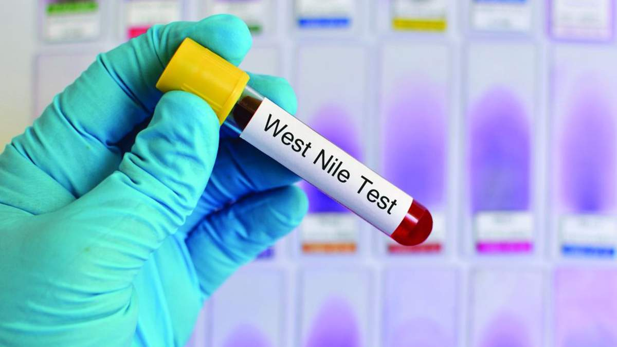 Вирус лихорадки Западного Нила – первый случай в Украине