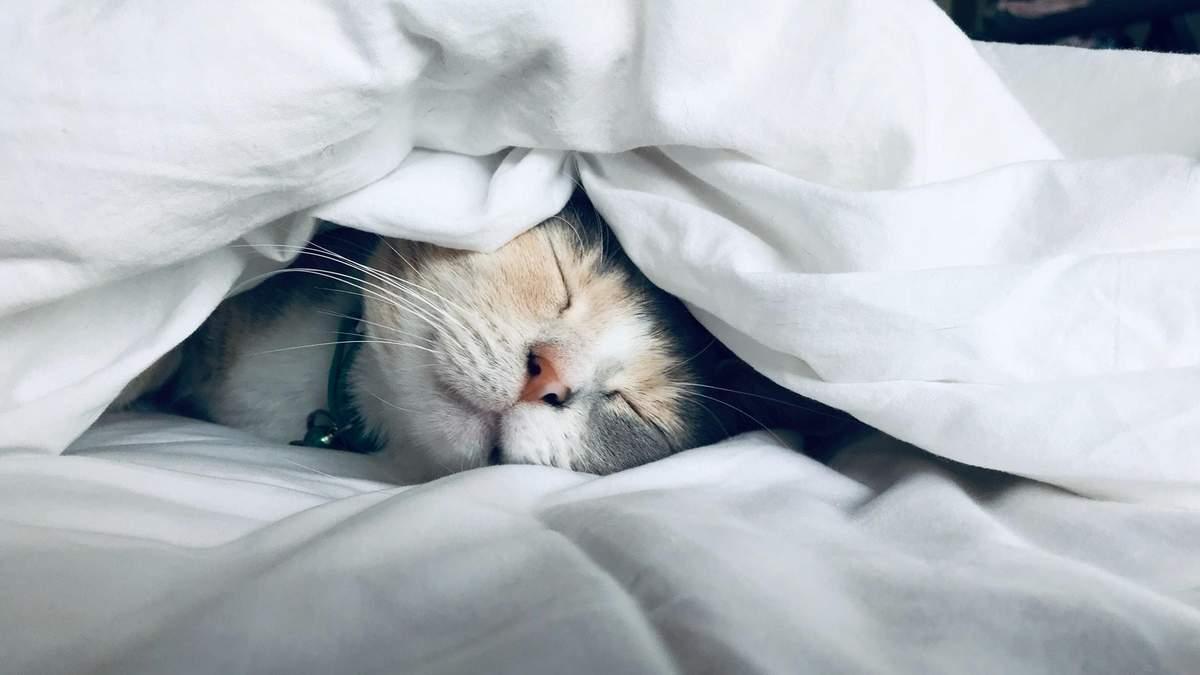 Знайшли ще один негативний вплив браку сну: цього разу страждає радість