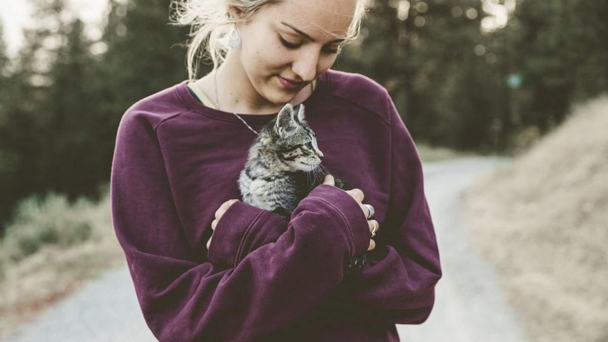 Як подружитися з котом