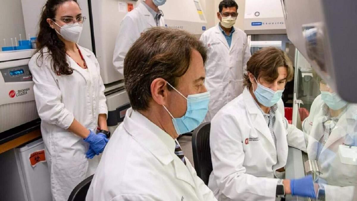 Обнаружили потенциальный способ лечения нейродегенеративных заболеваний