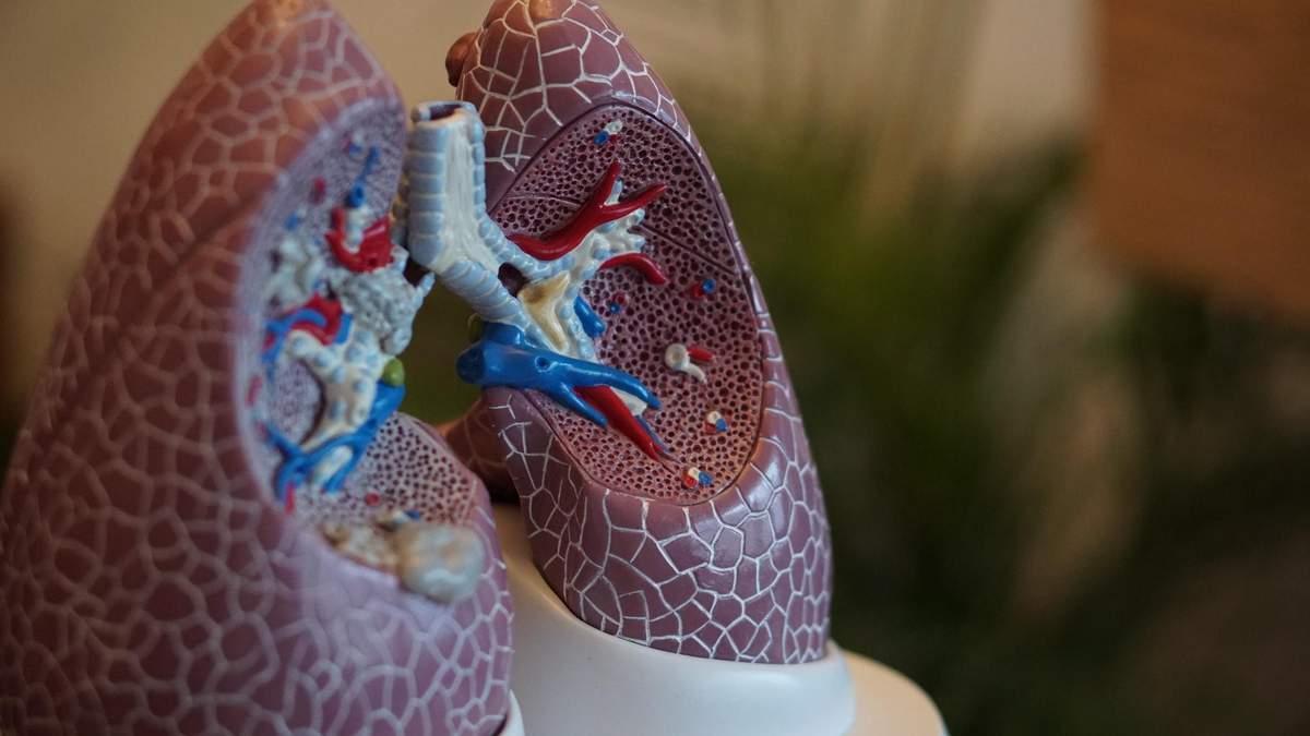 Як зберегти здорові легені