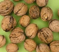 Наявність цього вітаміну знижує ризик ускладнень при COVID-19