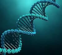Спрогнозировать ход коронавируса по ДНК: украинские ученые сделали революционное открытие