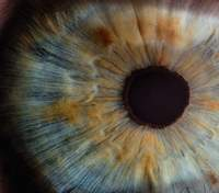 Мушки в очах: чому виникають та що робити