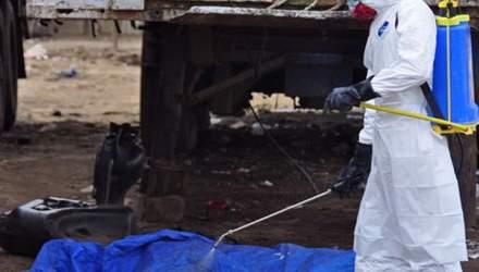 Кількість жертв Еболи наближається до 8 тисяч
