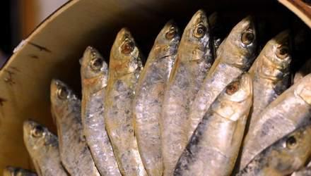 Чи безпечно зараз купувати в'ялену рибу: журналістське розслідування
