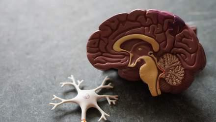 ВИЧ повреждает важные отделы мозга: исследование