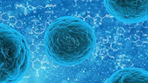 Прорыв в лечении диабета: нашли бактерию, которая поможет полностью выздороветь