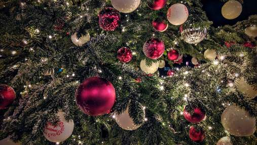 Аллергия на елку: как лишить себя праздника