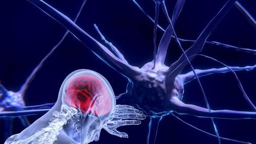 Доведено: нервова система відіграє ключову роль в боротьбі з інфекціями