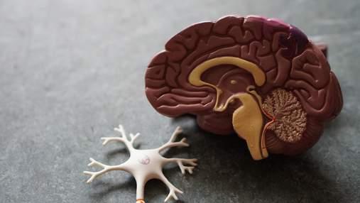 ВІЛ пошкоджує важливі відділи мозку: дослідження