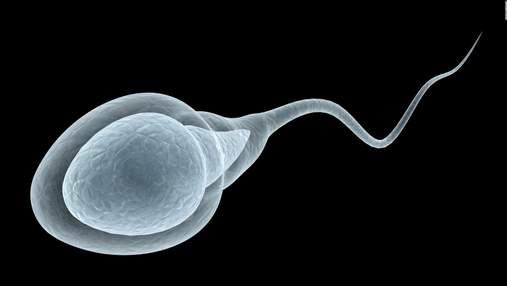 Коронавирус существенно ухудшает качество спермы, – исследование