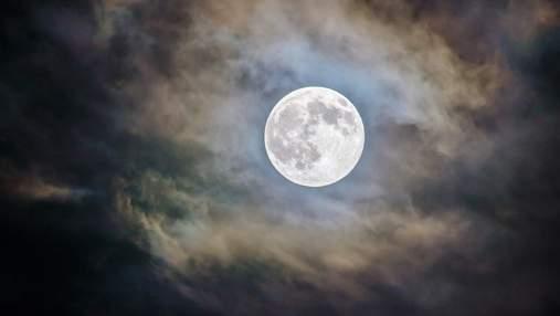 Менструальний цикл може синхронізуватися з фазами Місяця