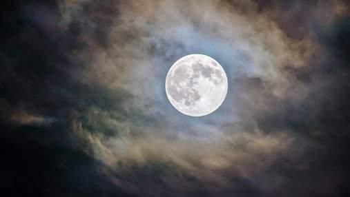 Менструальный цикл может синхронизироваться с фазами Луны