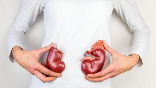 Як холод впливає на нирки та чи можна їх відморозити