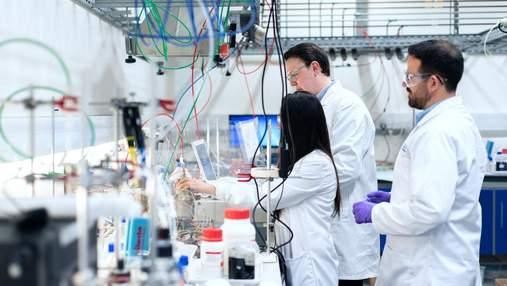 Распространенное растительное соединение оказалось эффективным против агрессивного рака мозга