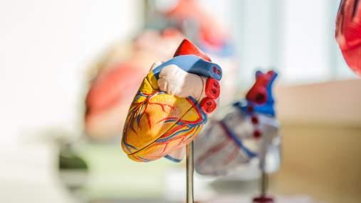 Вперше створили аналіз, який дозволить швидко відрізнити інфаркт від міокардиту