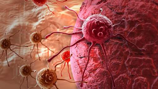 Ученые нашли механизм, который может помочь остановить распространение раковых клеток опухоли