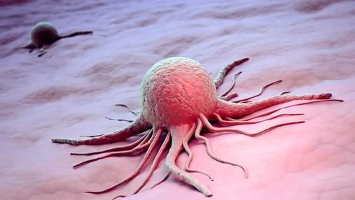 Стартап из США выращивает раковые опухоли, чтобы подобрать эффективное лекарство для онкобольных