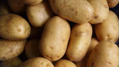 Насколько полезна картошка и сколько ее можно есть