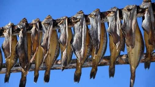 Попробовали вяленую рыбу: в Запорожье от ботулизма умерла женщина, а ее муж в тяжелом состоянии