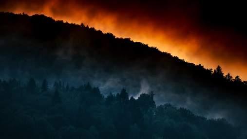 Наслідки лісових пожеж щорічно вбивають десятки тисяч людей