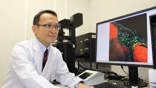 Створили гідрогель, який за добу перетворює ракові клітини на звичайні стволові